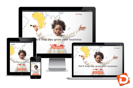Developit-africa-website-development-gaborone-botwana